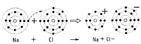 219-pole-integralnoi-medicini-1