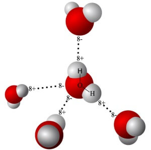 219-pole-integralnoi-medicini-4
