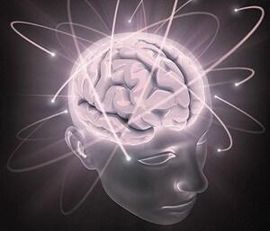 """Балсам за мозъка B900 """"Аристотел"""""""